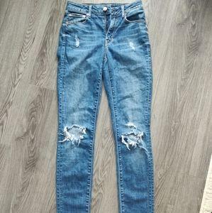 Aritzia Paradise Mine High Rise Skinny Jeans